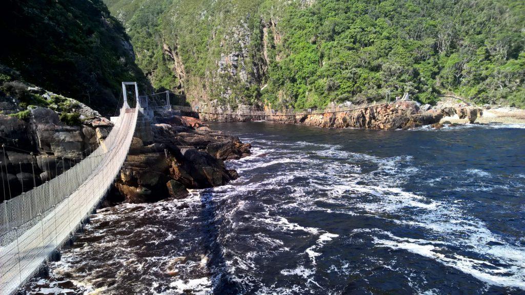 Garden route: Tsitsikamma National Park hangbruggen