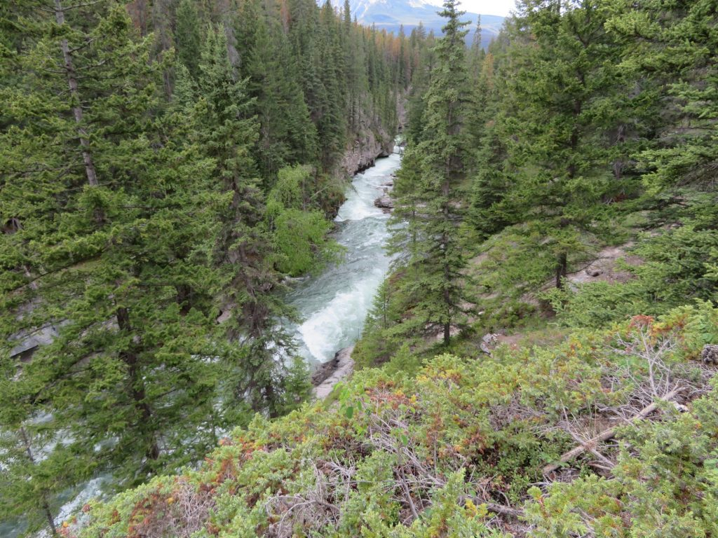 Hikes in Jasper en Banff: Maligne Canyon 2