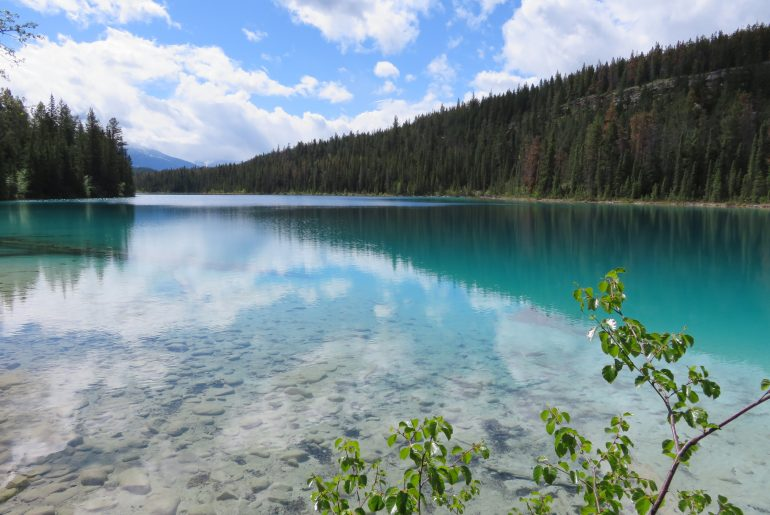 Hikes in Jasper en Banff: Valley of the five lakes | first lake