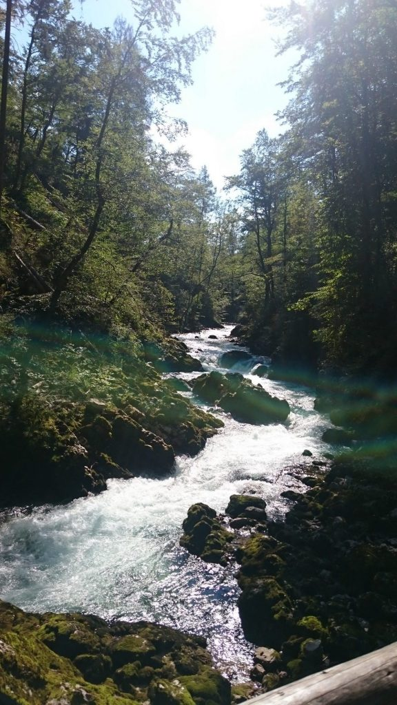 Wandelen in Slovenië | Vintgar Gorge nevel