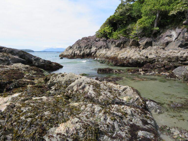 9 activiteiten op Vancouver Island