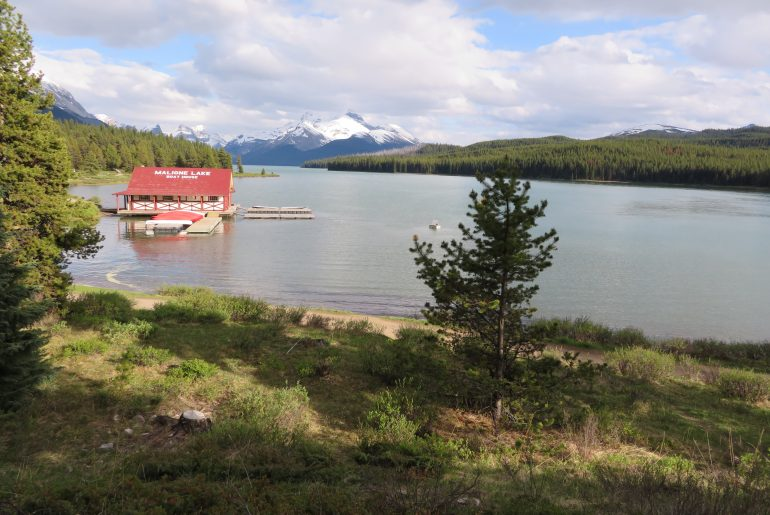 Maligne Lake in Jasper Canada