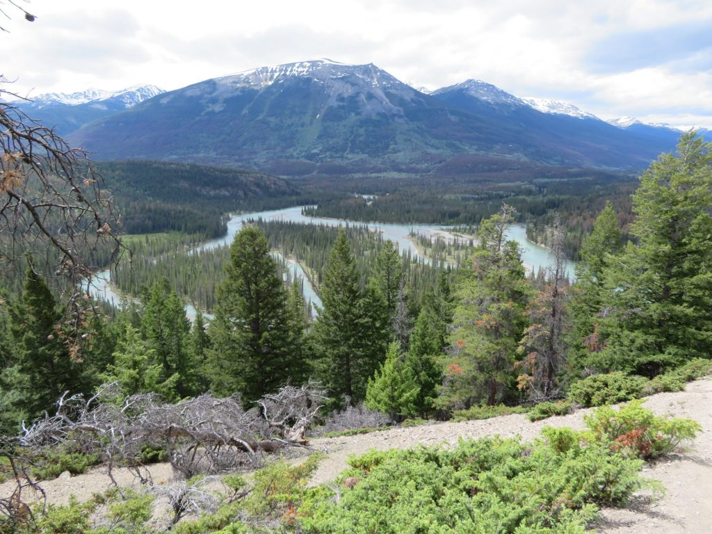 Route Camperreis West-Canada | Athabasca river | Jasper National Park
