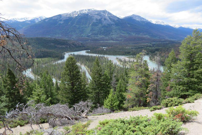 Athabasca river vanaf Old Fort Point Jasper Canada
