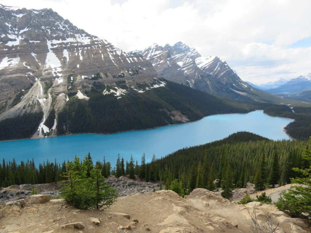 Peyto Lake | Banff National Park | Icefields Parkway