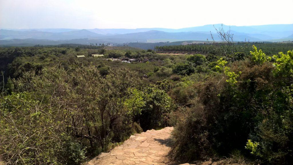 Rainforest | God's Window | Zuid Afrika