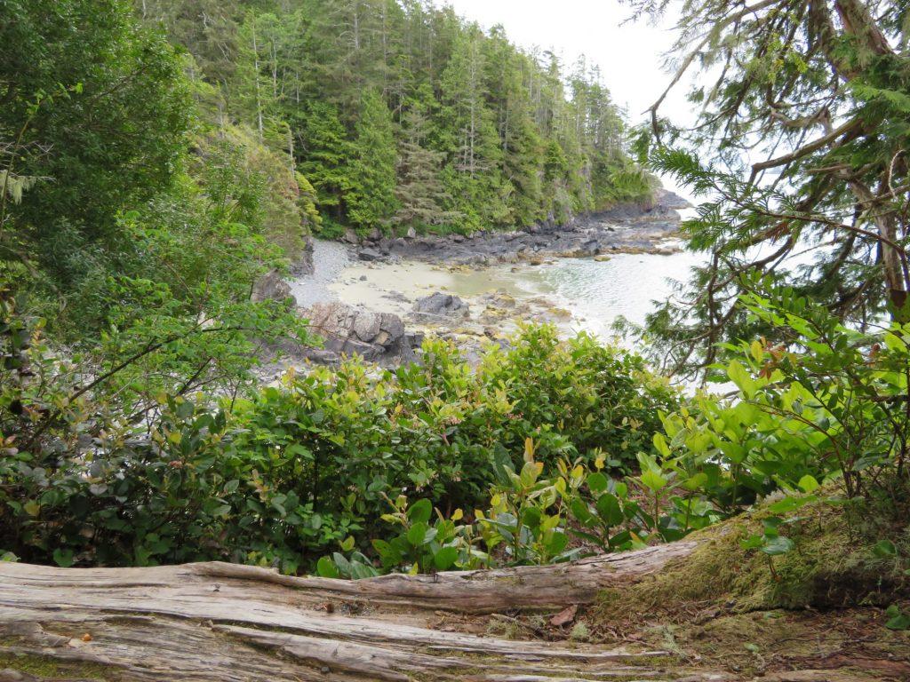 Tonquin Trail | Tofino | Vancouver Island