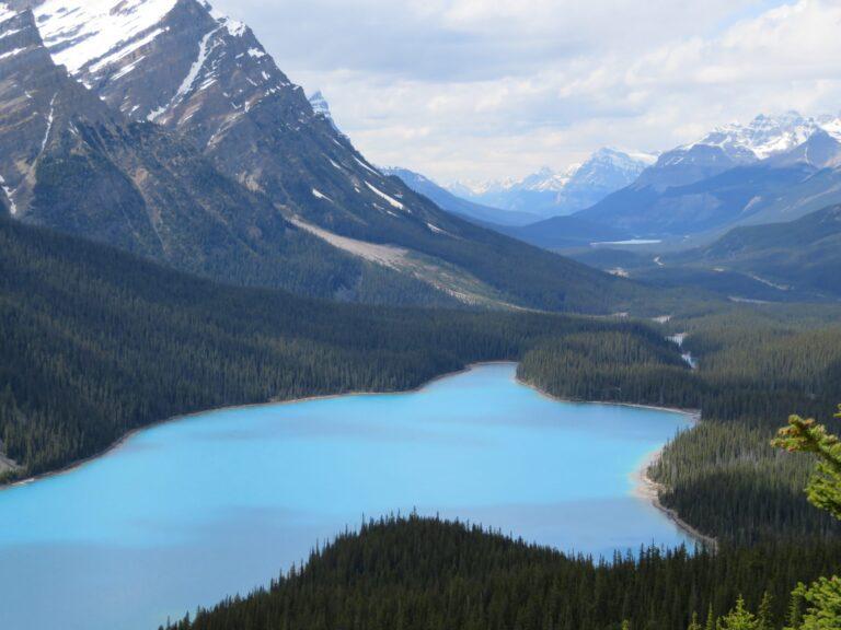 12 activiteiten in Banff National Park die je niet mag overslaan | Peyto Lake