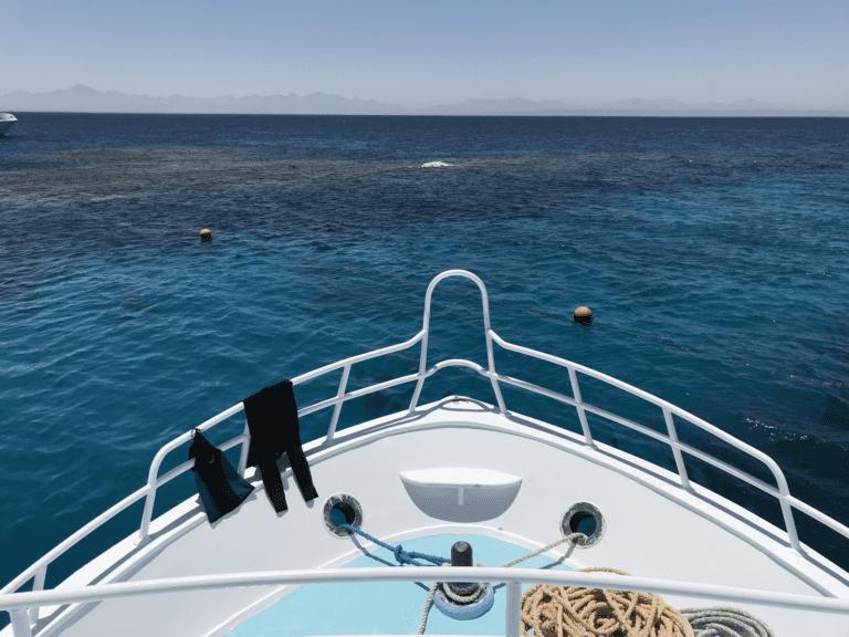 Een heerlijk weekje duiken in El Gouna Egypte