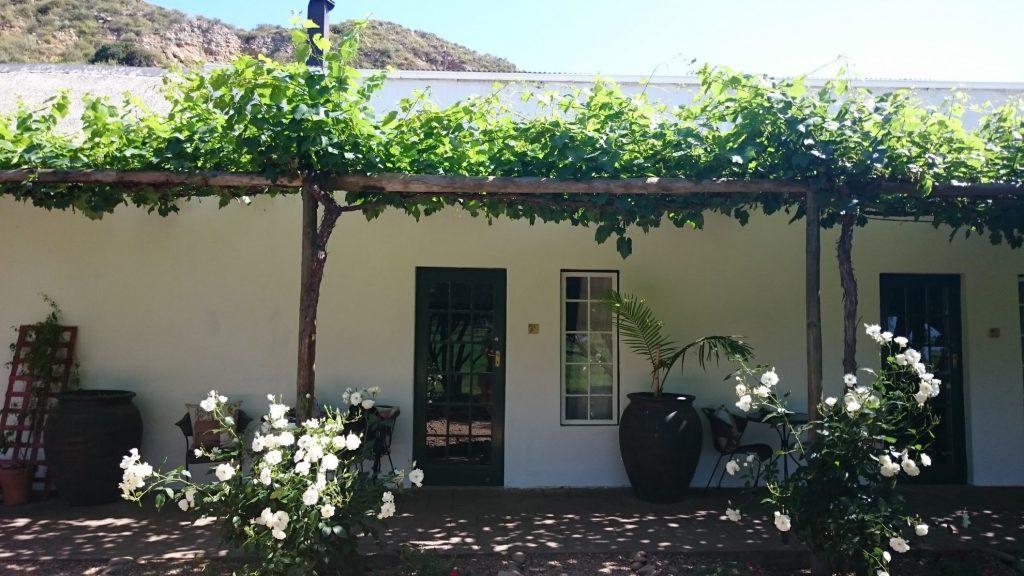 Route 62 Zuid Afrika | Soeterus Guest Farm