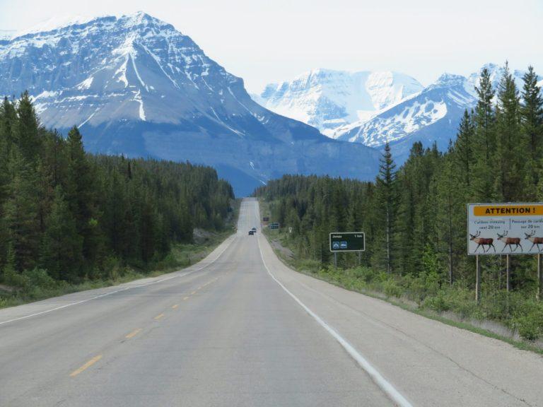 Hoogte punten Icefields Parkway | Jasper National Park