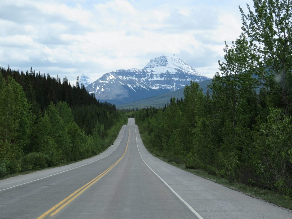 Hoogtepunten Icefields Parkway | Jasper National Park | Banff National Park