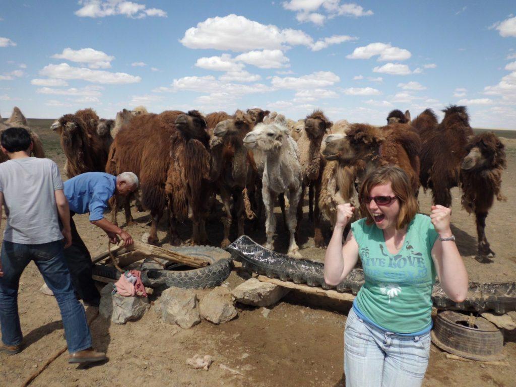 Dorstige kamelen in de buurt van Dalanzadgad