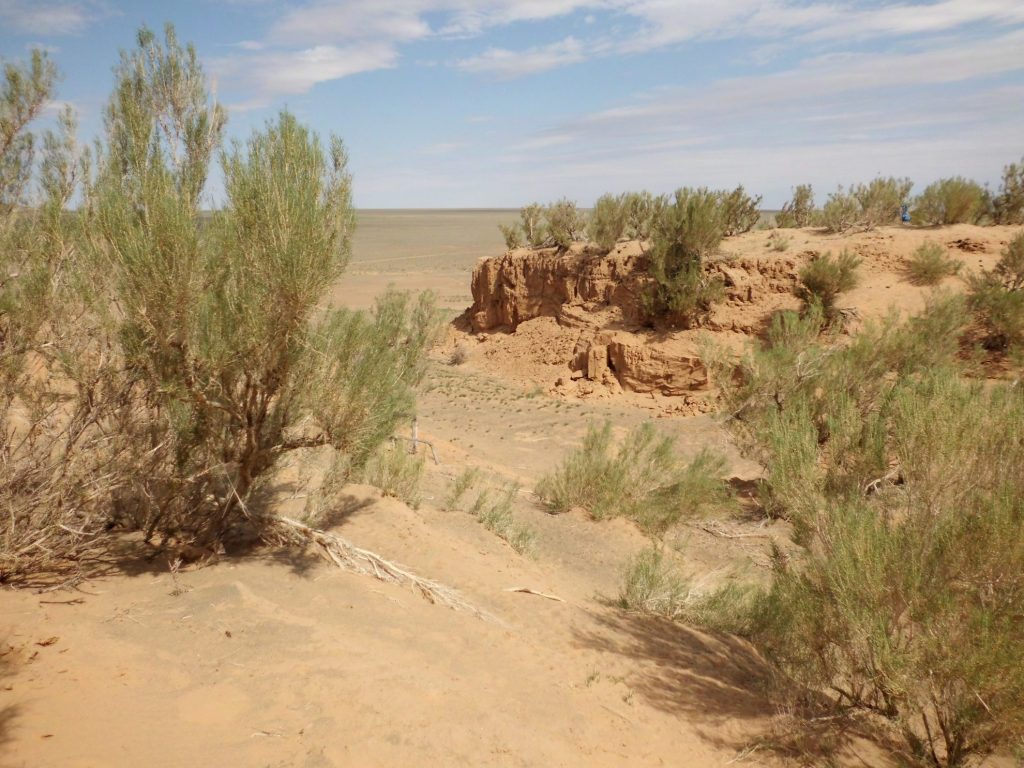 Zandduinen bij Saikhan Ovoo | Gobi woestijn