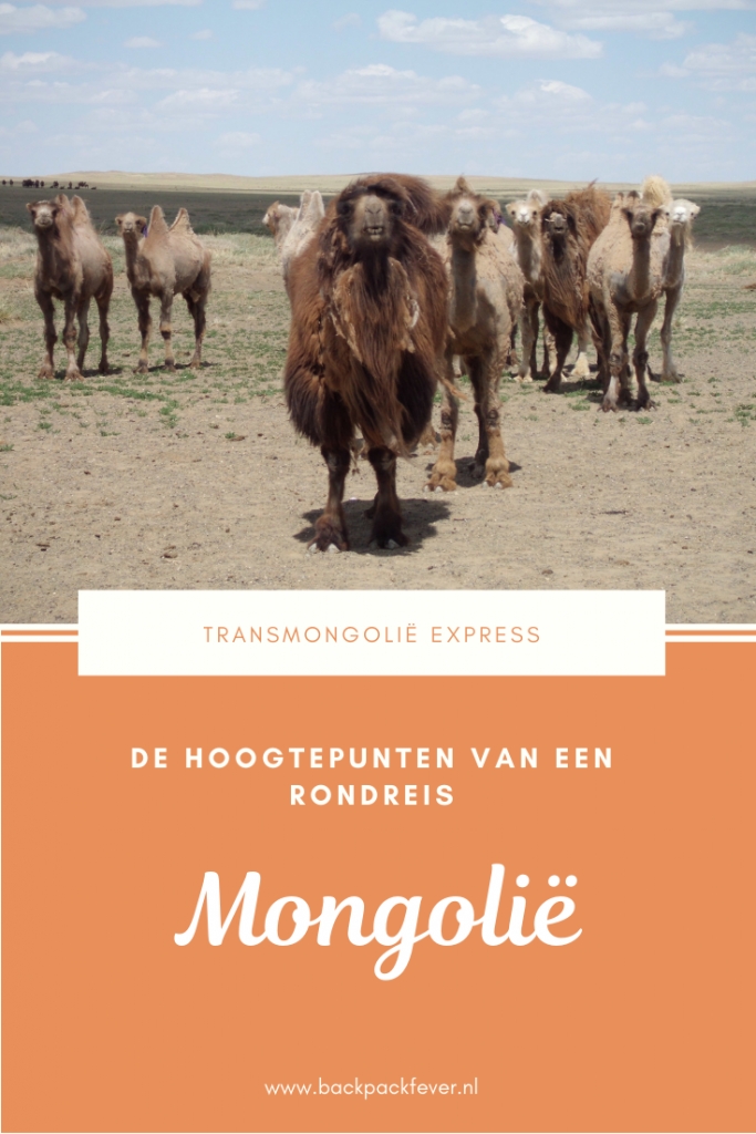 Pin it! Rondreis Mongolië