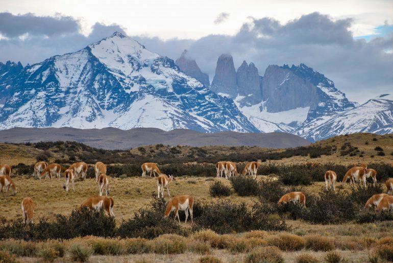 Top 10 bucketlist bestemmingen | Patagonië