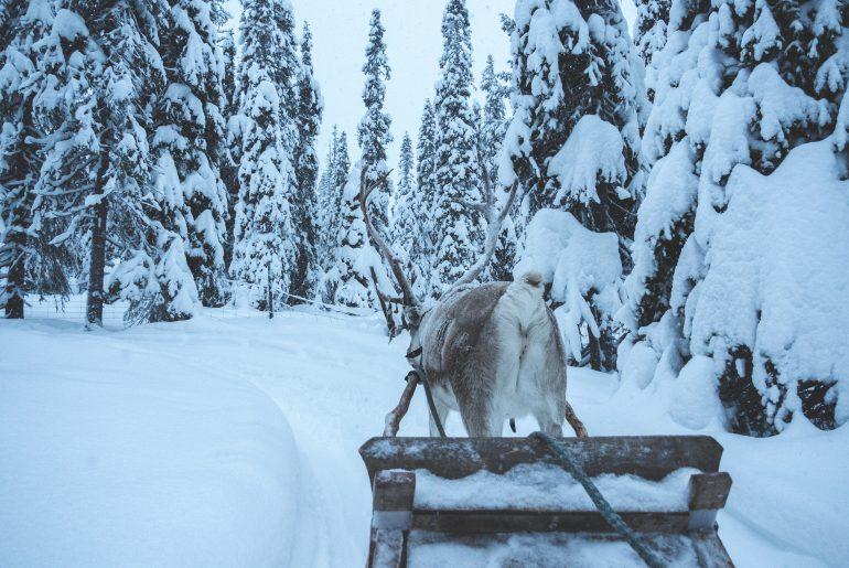 Lapland | top 10 voor dit decennium