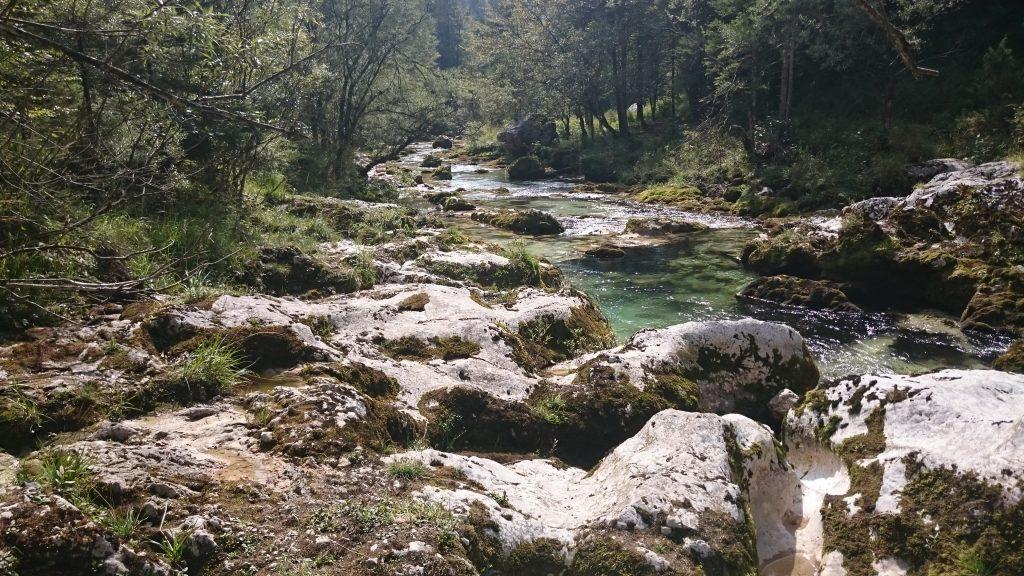 Mostnica Kloof | Wandelen in Slovenië | Bohinj