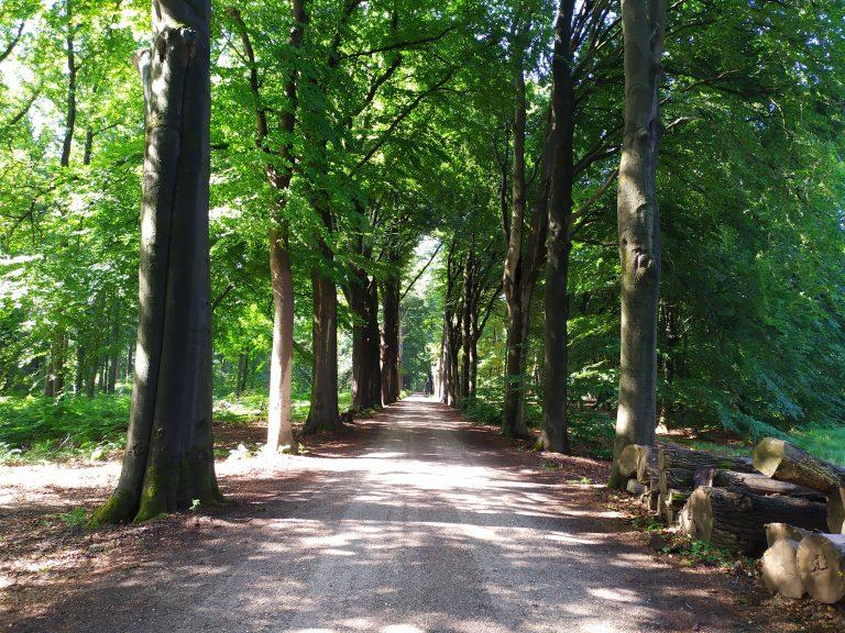 Een weekendje weg tussen de Brabantse landgoederen