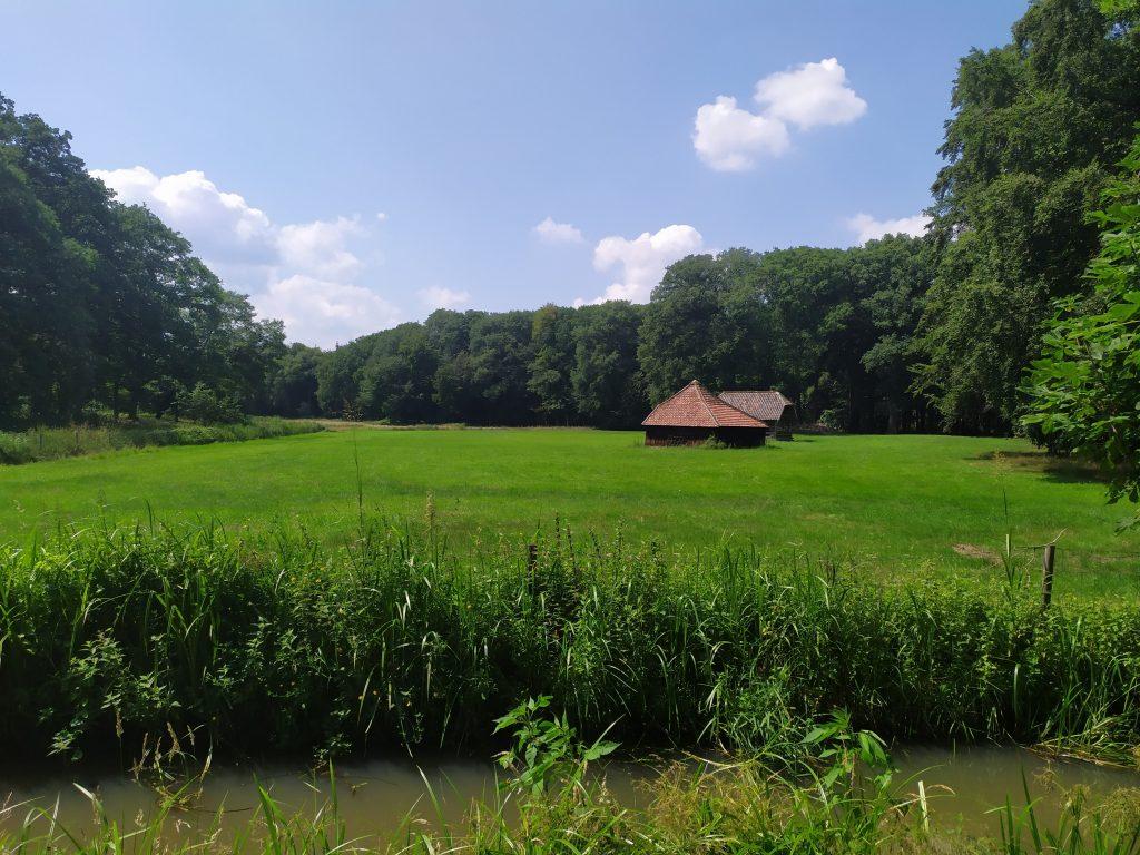 Picknicken bij de Rosmolen | Wandelen in Noord Limburg