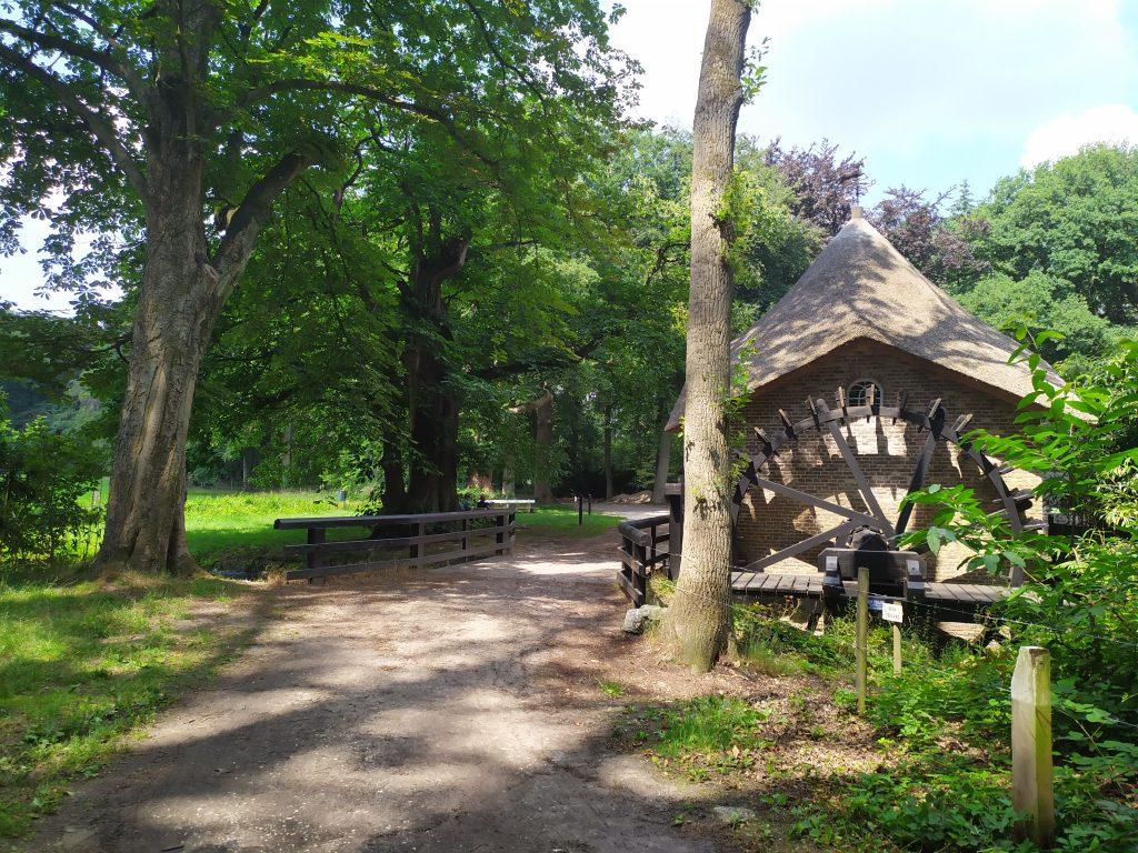 Pop-up avonturen: Op ontdekking in de Limburgse rivierduinen   Kamperen in Noord-Limburg