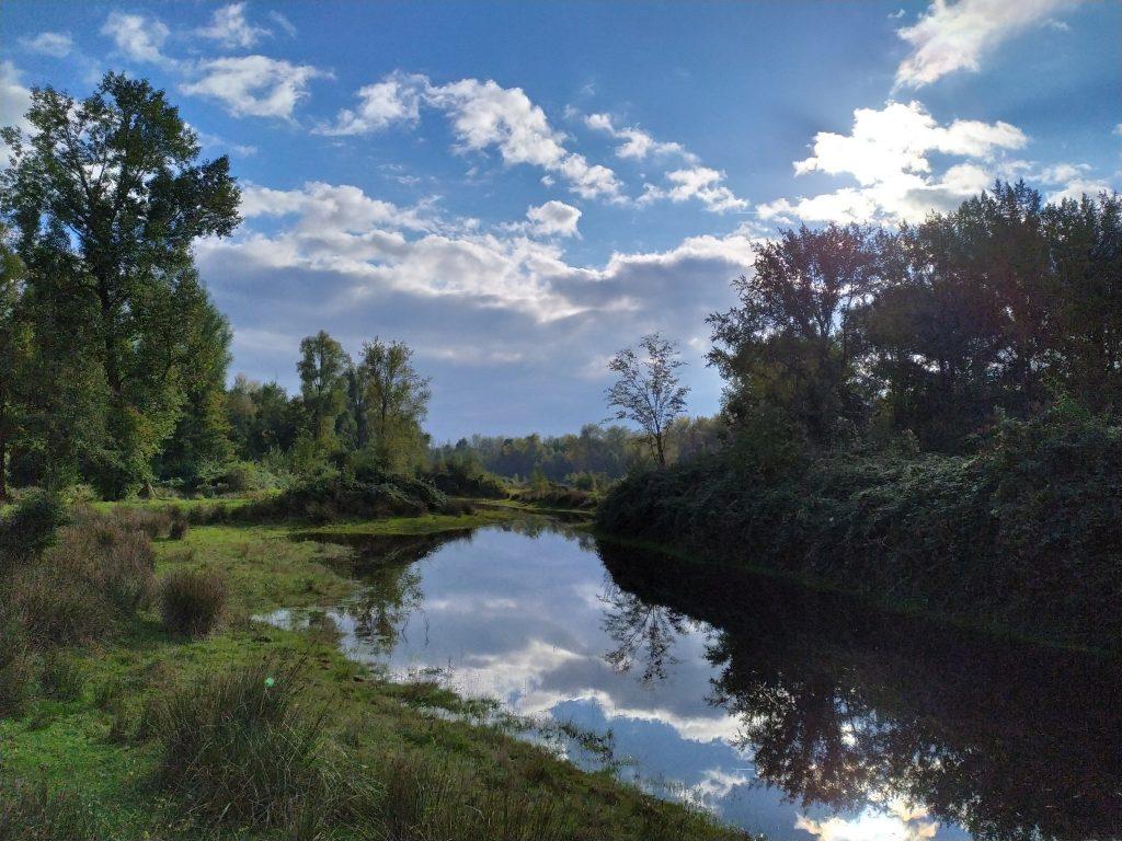 Wandelen in de herfst | Landgoed de Wielewaal | Laakse Slenk