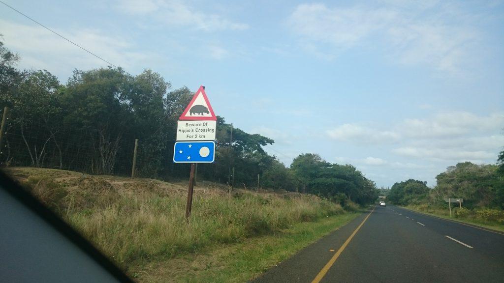 Roadtrip Zuid Afrika | overstekende nijlpaarden