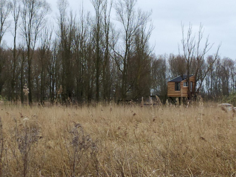 het Lauwersmeer ontdekken vanuit een boomhut