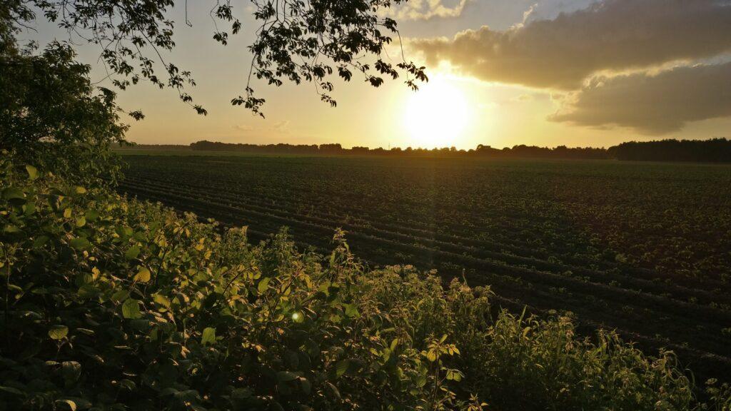 De mooiste plek van Drenthe: zonsondergang op Landgoed Mariahoeve