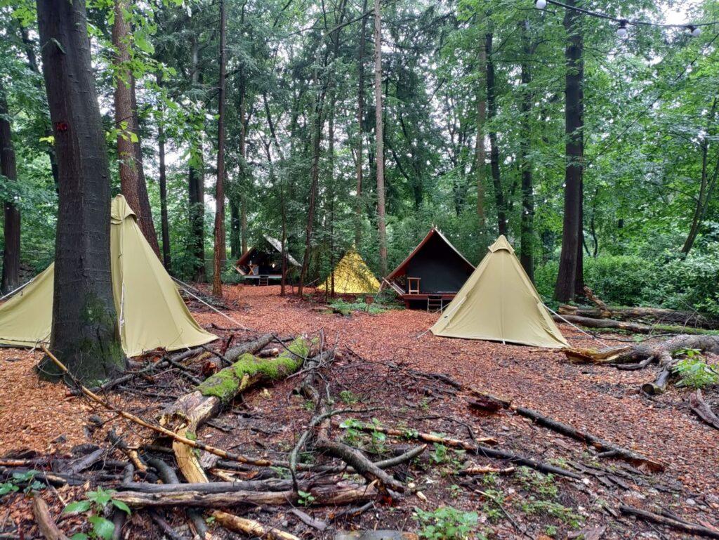 Burgers' Zoo Camp: Slapen tussen de apen